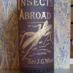 J.G. Wood, Insects Abroad (1880)