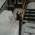 Suz working to get the snowblower free while I talk about books is sunny CA.